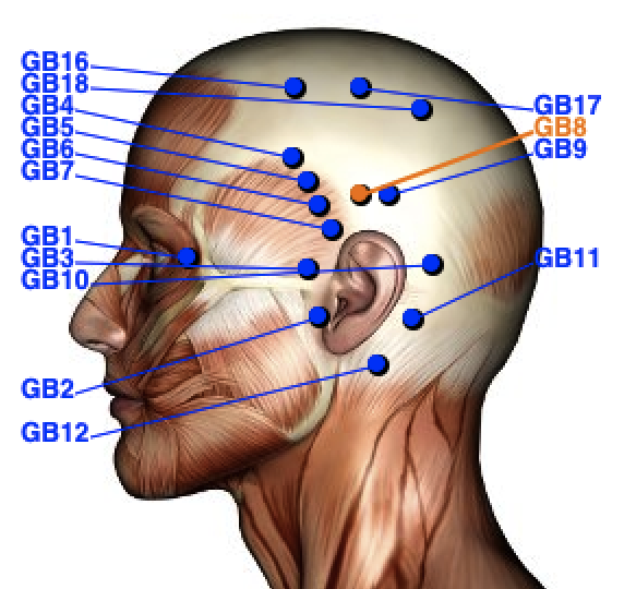 acupuncture points qigong